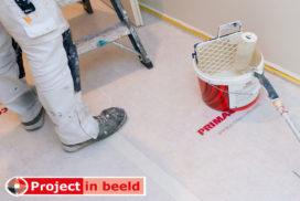 Primaverde_project_Bas-van-de-Wiel_schilder_PrimaCover_Standard_trap_latex